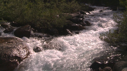 HD2008-8-7-45 whitewater stream Stock Video Footage