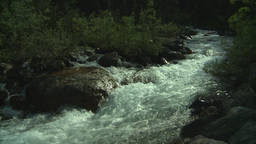 HD2008-8-7-49 whitewater stream Stock Video Footage