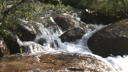 HD2008-8-7-51 whitewater stream Stock Video Footage