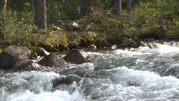 HD2008-8-7-53 whitewater stream Stock Video Footage
