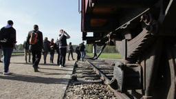 Visitors at Auschwitz Birkenau - railway line Footage