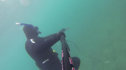 Spear fisherman shoots a fish underwater Footage
