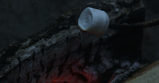 Roasting Marshmallows On Fire stock footage