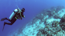 Scuba Diver Checking His Dive Computer On Drift Di stock footage