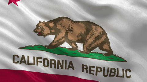 US state flag of California seamless loop Stock Video Footage