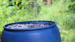 Rainwater harvesting to a blue barrel Stock Video Footage