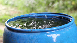 Rain water fills blue water barrel durin a rain Footage