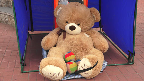 Big Teddy bear. 4K Stock Video Footage