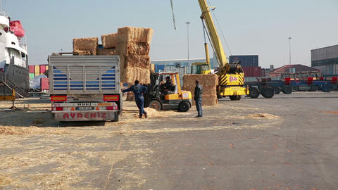 IZMIR, TURKEY - JANUARY 2013: Hay bales loaded ont Footage