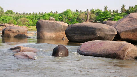 HAMPI, INDIA - APRIL 2013: Elephant bathing in riv Footage