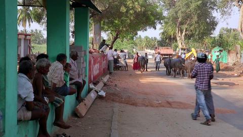 HAMPI, INDIA - APRIL 2013: Everyday street scene Stock Video Footage