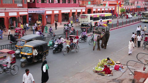 JAIPUR, INDIA - APRIL, 2013: Elephant at daily tra Stock Video Footage