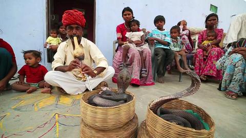 JAIPUR, INDIA - APRIL, 2013: Local cobra enchanter Live Action