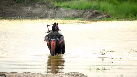 CHITWAN, NEPAL - JUNE 2013: Elephant Safari and ri Footage
