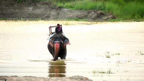 CHITWAN, NEPAL - JUNE 2013: Elephant Safari and ri Stock Video Footage