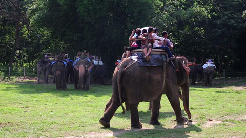 CHITWAN, NEPAL - JUNE 2013: Riding on elephants ba Stock Video Footage