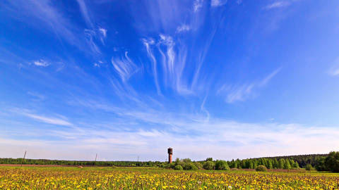 Summer landscape. Time Lapse Footage