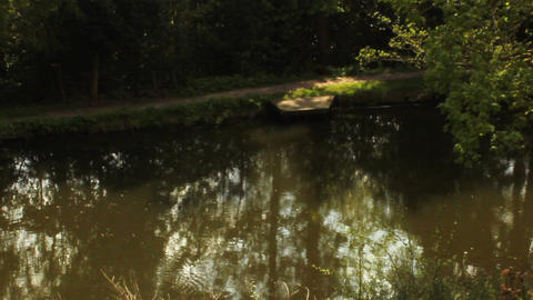 Static Shot Of A Lovely Pond stock footage