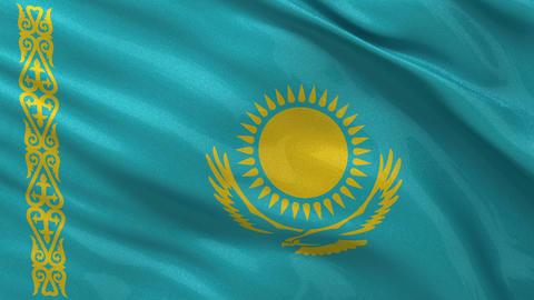Flag of Kazakhstan seamless loop Stock Video Footage