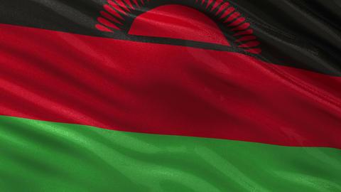 Flag of Malawi seamless loop Animation