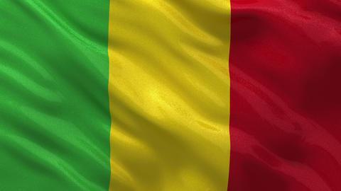 Flag of Mali seamless loop Stock Video Footage