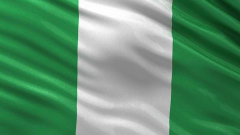Flag of Nigeria seamless loop Animation