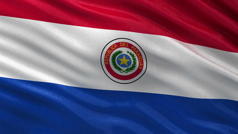 Flag of Paraguay seamless loop Animation