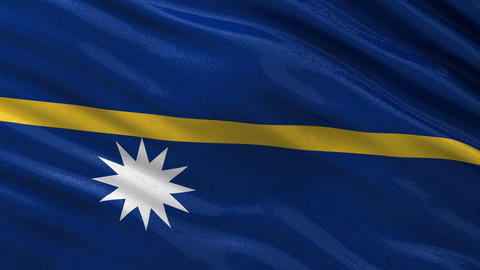 Flag of Nauru seamless loop Animation