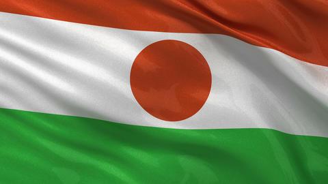 Flag of Niger seamless loop, Stock Animation