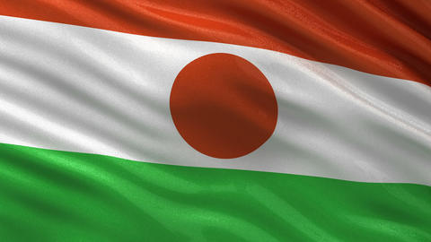 Flag of Niger seamless loop Animation