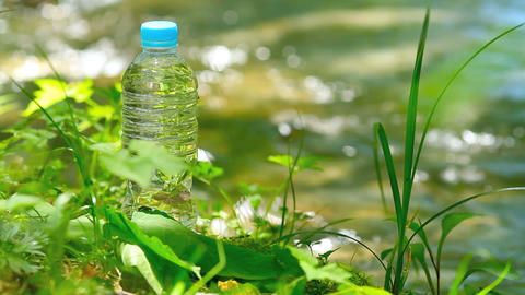 Pet bottle of pure drink in forest Footage