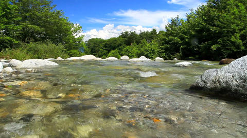 Rapid stream of a mountain river Footage