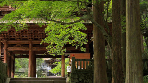 Buddhist temple Footage