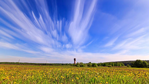 White clouds blurred over a field of dandelions. T Stock Video Footage