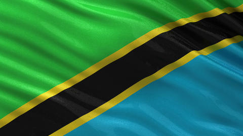 Flag of Tanzania seamless loop Animation