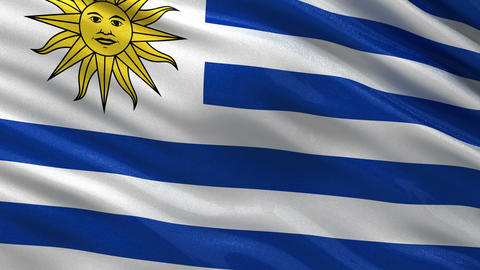 Flag of Uruguay seamless loop Animation