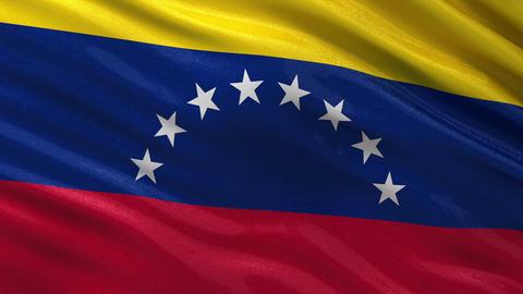 Flag of Venezuela seamless loop Animation