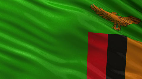 Flag of Zambia seamless loop Animation