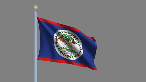 Flag of Belize Animation
