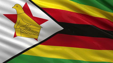Flag of Zimbabwe seamless loop Animation