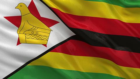 Flag of Zimbabwe seamless loop Stock Video Footage