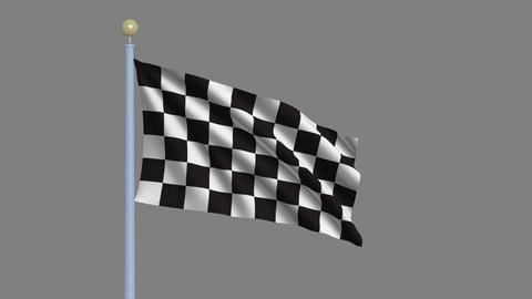 Checker Flag Stock Video Footage