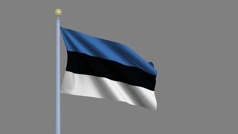 Flag of Estonia Animation