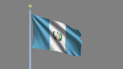 Flag of Guatemala Stock Video Footage