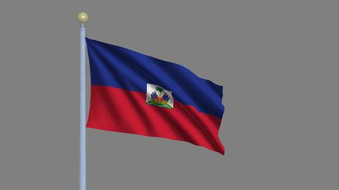 Flag of Haiti Stock Video Footage