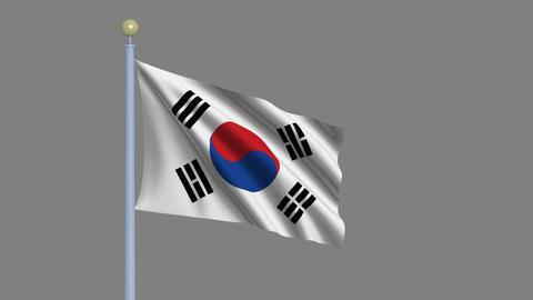 Flag of South Korea Stock Video Footage