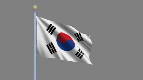 Flag Of South Korea stock footage