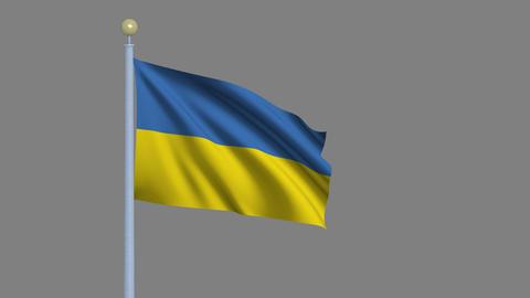 Flag of Ukraine Footage