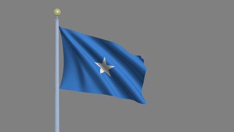 Flag Of Somalia stock footage