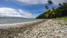 Rocky Shore Along Tropical Beach stock footage